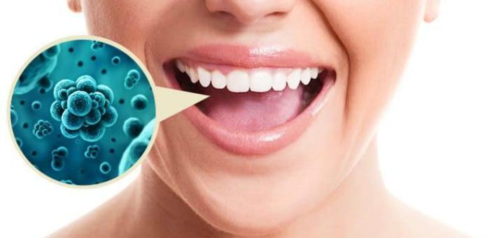 Бактерии в полости рта