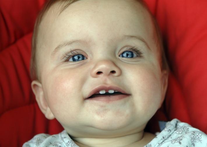 Порядок прорезывания зубов у ребенка