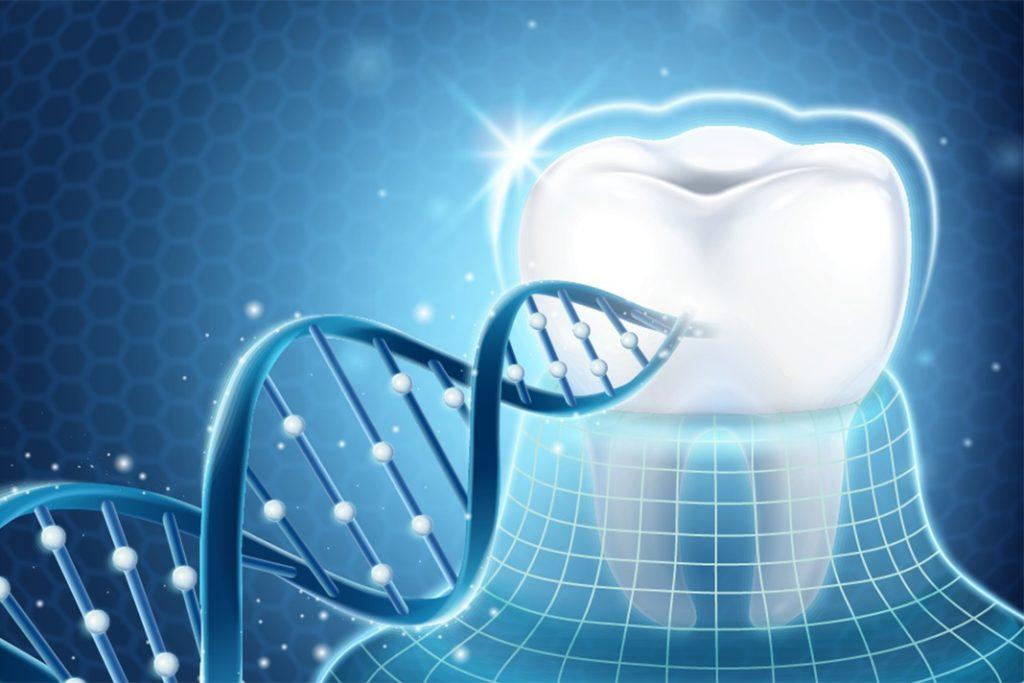 Выращивание искусственных зубов